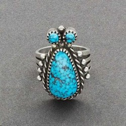 Mike Bird Romero Ring of Turquoise Bug